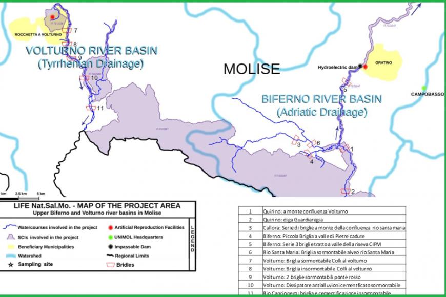Determinazione della connettività fluviale