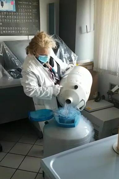 La tutela della criobanca del seme prosegue anche sotto pandemia